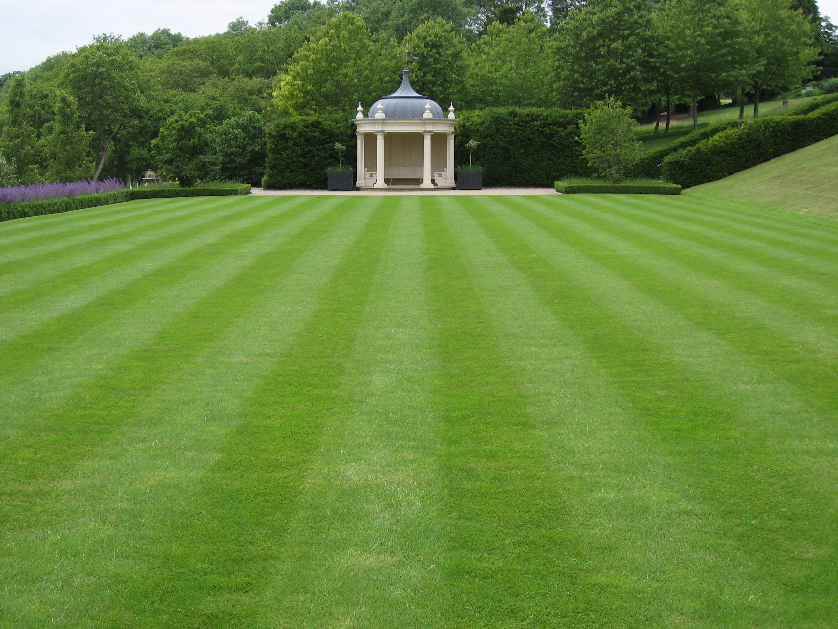 Fine Quality Lawn At Cherkley Court